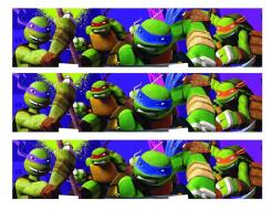 TMNT cake topper, edible image cake sticker decal, edible cake topper TMNT, TMNT cake wrap