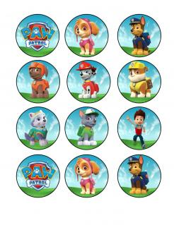 Paw Patrol cake sticker edible image cake decal