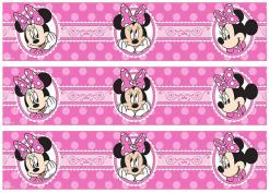 Mnnie Mouse cake decals photo cakes stickers